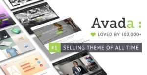 Avada Multiporpose Wordpress Theme